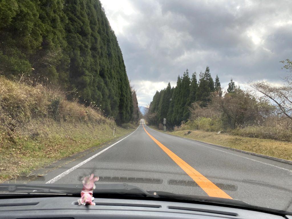 熊本県阿蘇市をドライブした時に撮影した写真